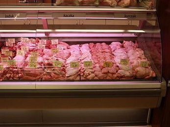 SELF CONTAINED MEAT CASE